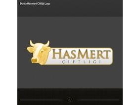 Hasmert4.jpg?ixlib=rails 1.1